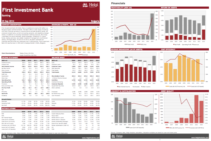 First Investment Bank at a Glance